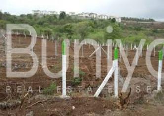 Buniyad - buy Residential Plot in Gurgaon of 502.0 SqYd. in 7.53 Cr P-425515-Residential-Plot-Gurgaon-Dlf-Phase-3-Sale-a192s000001Fm3TAAS-204158999